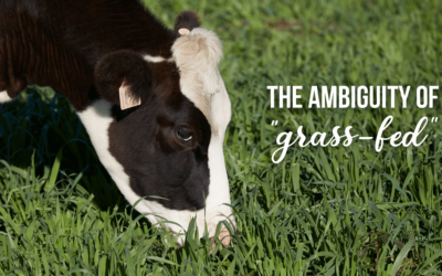"""The Ambiguity of """"Grass-Fed"""" Milk"""
