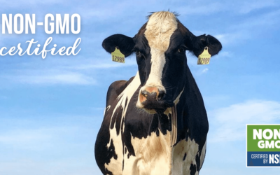 Hart Dairy Milk is Non-GMO Certified by NSF