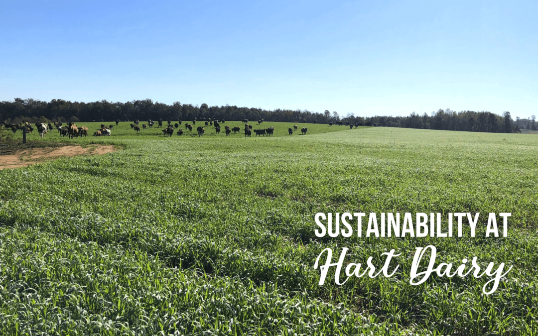 Sustainability at Hart Dairy